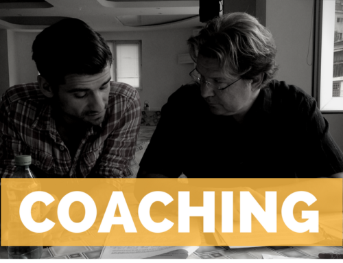 Coaching / Mentoring / Consulting